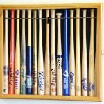 baseball bat cases
