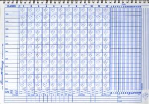 baseball scoresheet2