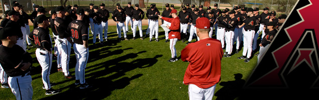 choosing-the-best-baseball-fantasy-camp-01