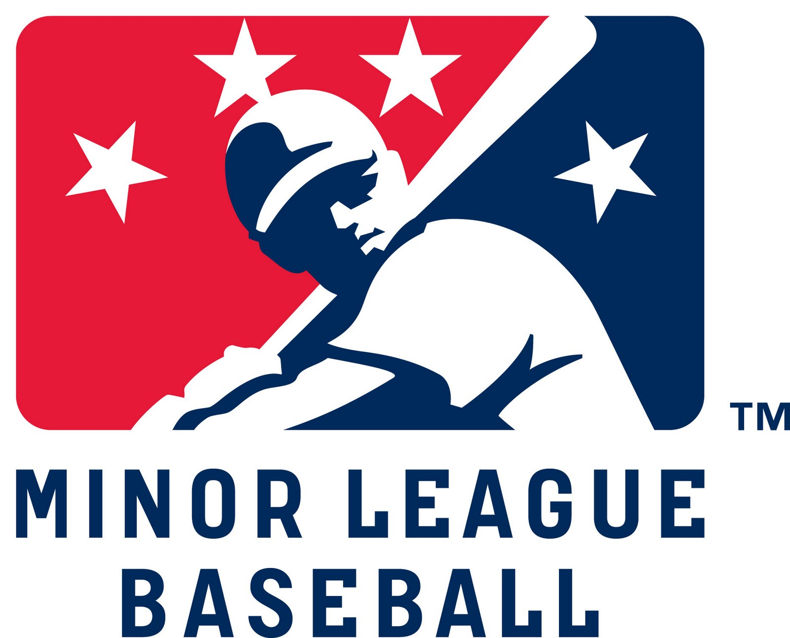 minor-league-baseball-team-01