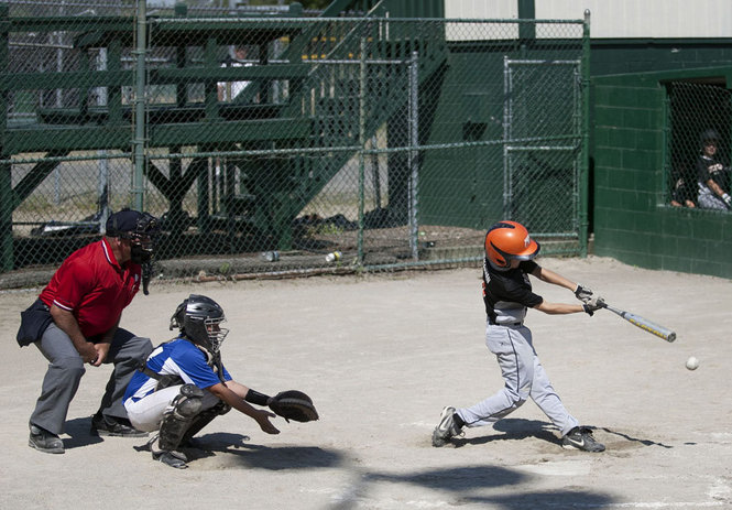 mlive youth baseball4